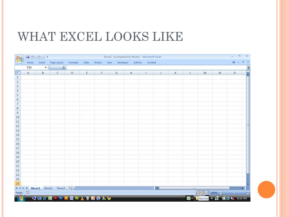 WHAT EXCEL LOOKS LIKE