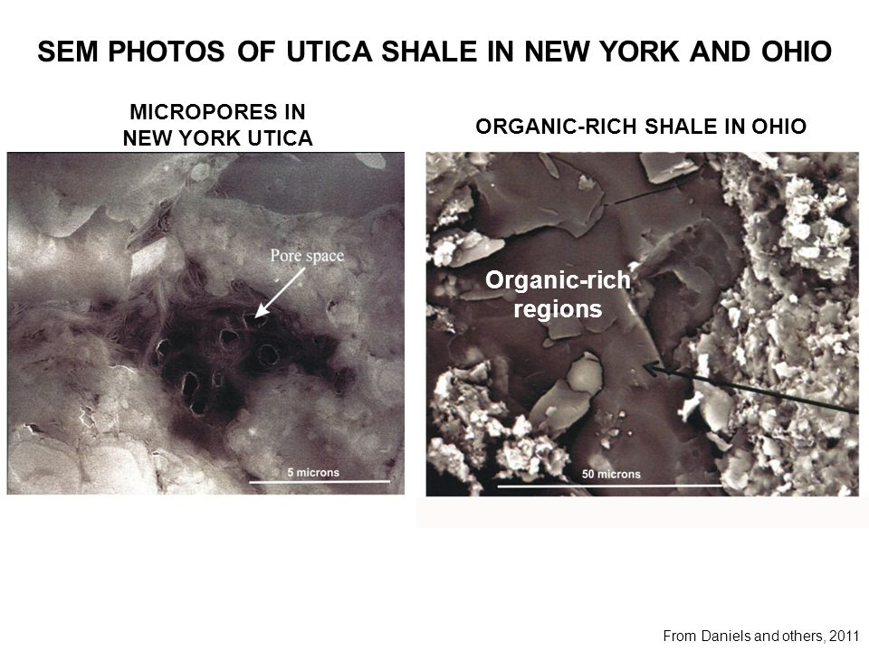SEM PHOTOS OF UTICA SHALE IN NEW YORK AND OHIO From Daniels and others, 2011 MICROPORES IN NEW YORK UTICA ORGANIC-RICH SHALE IN OHIO Organic-rich regions