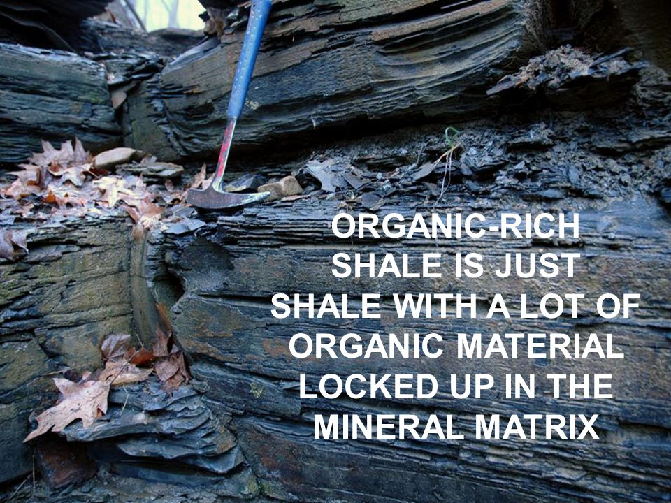 ORGANIC-RICH SHALE IS JUST SHALE WITH A LOT OF ORGANIC MATERIAL LOCKED UP IN THE MINERAL MATRIX