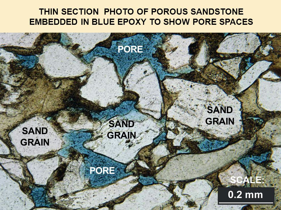 SAND GRAIN PORE THIN SECTION PHOTO OF POROUS SANDSTONE EMBEDDED IN BLUE EPOXY TO SHOW PORE SPACES PORE SAND GRAIN SAND GRAIN SCALE: