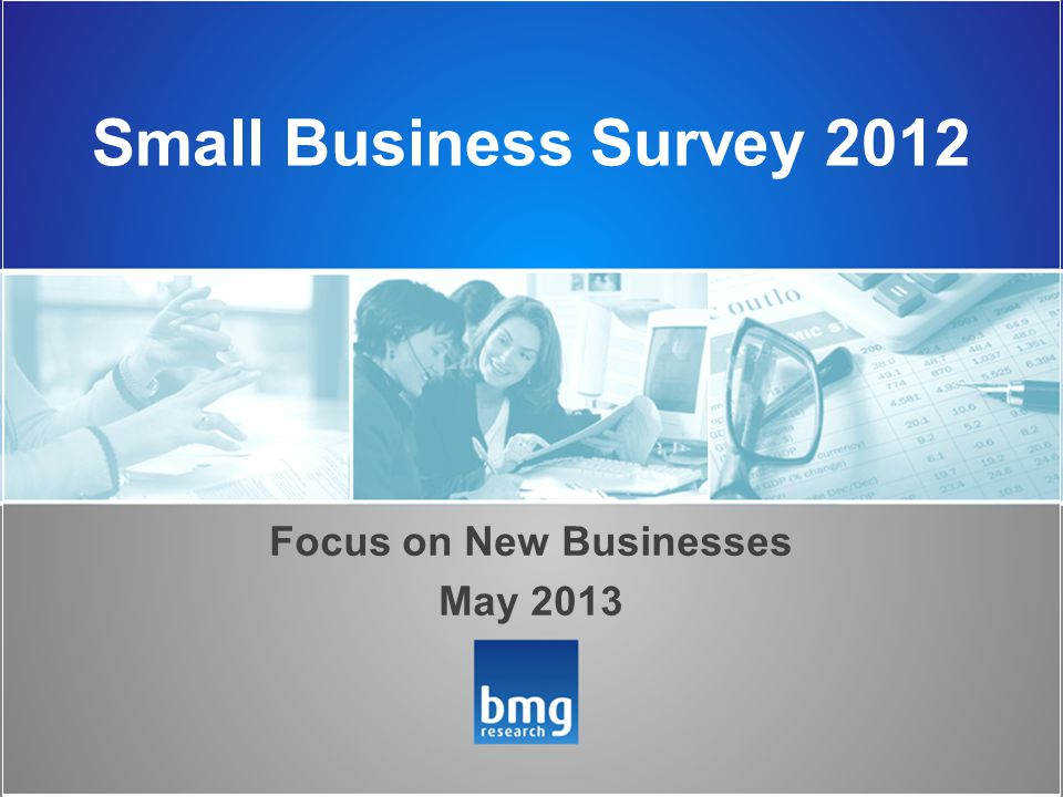 Small Business Survey 2012 Focus on New Businesses May 2013