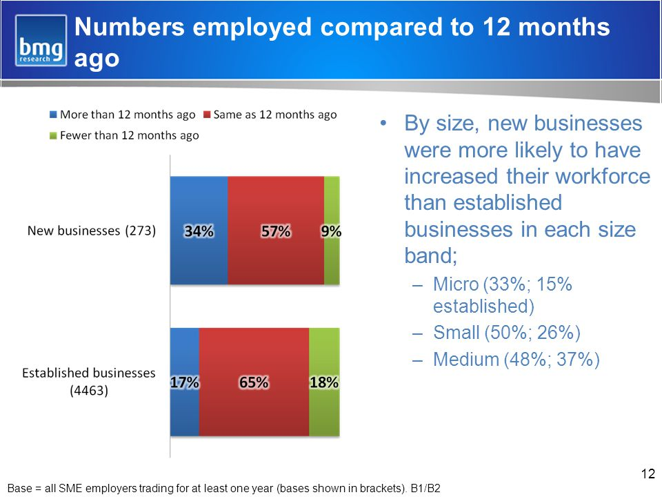 Numbers employed compared to 12 months ago By size, new businesses were more likely to have increased their workforce than established businesses in each size band; –Micro (33%; 15% established) –Small (50%; 26%) –Medium (48%; 37%) 12 Base = all SME employers trading for at least one year (bases shown in brackets).