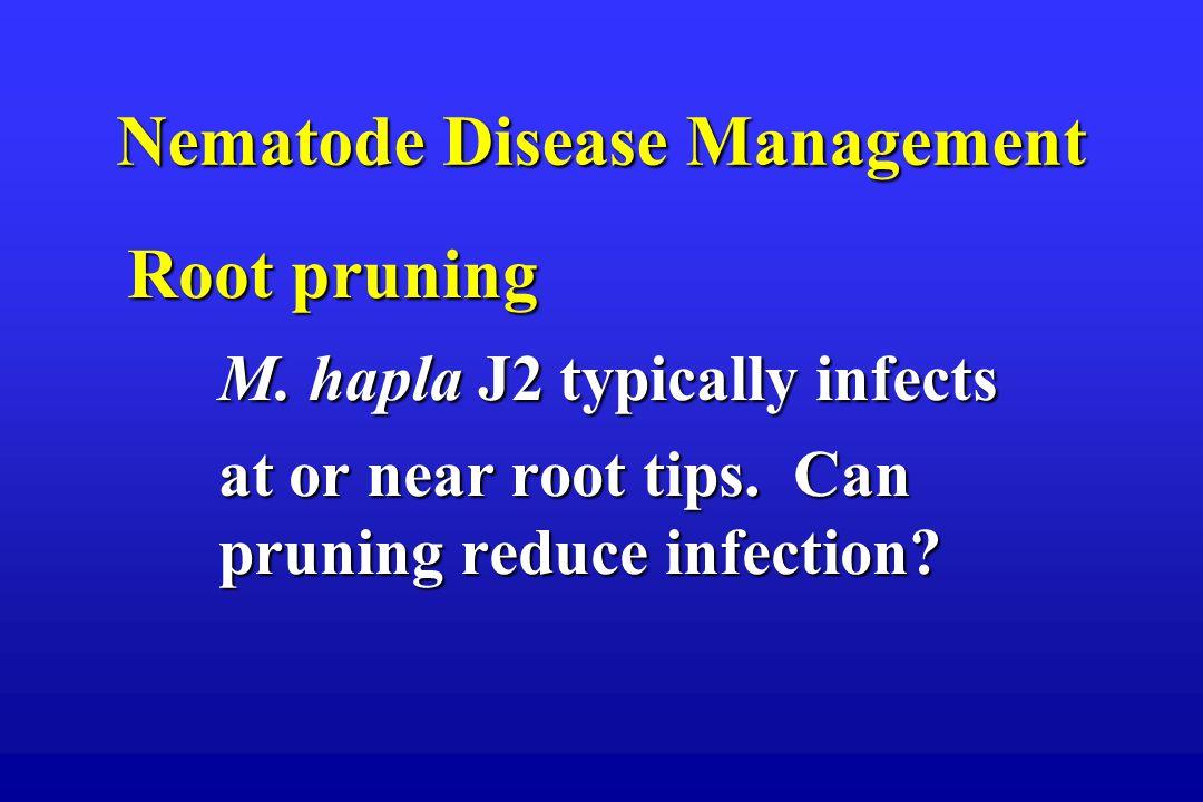 Nematode Disease Management Root pruning Root pruning M.