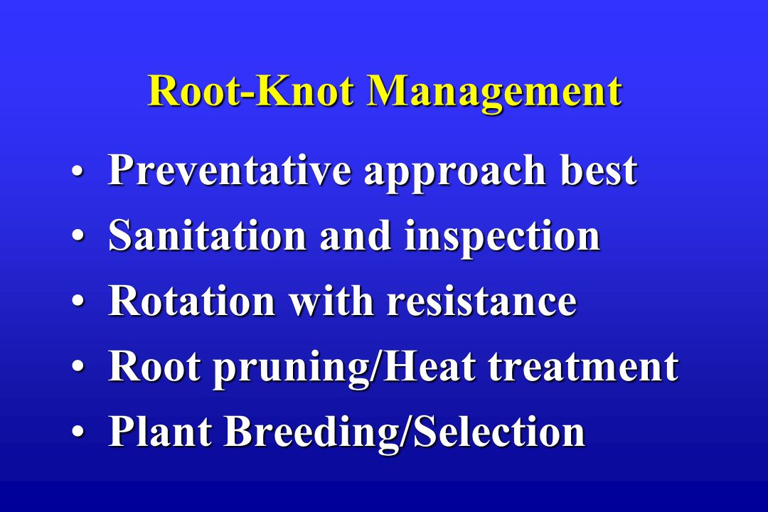 Root-Knot Management Preventative approach best Preventative approach best Sanitation and inspection Sanitation and inspection Rotation with resistance Rotation with resistance Root pruning/Heat treatment Root pruning/Heat treatment Plant Breeding/Selection Plant Breeding/Selection