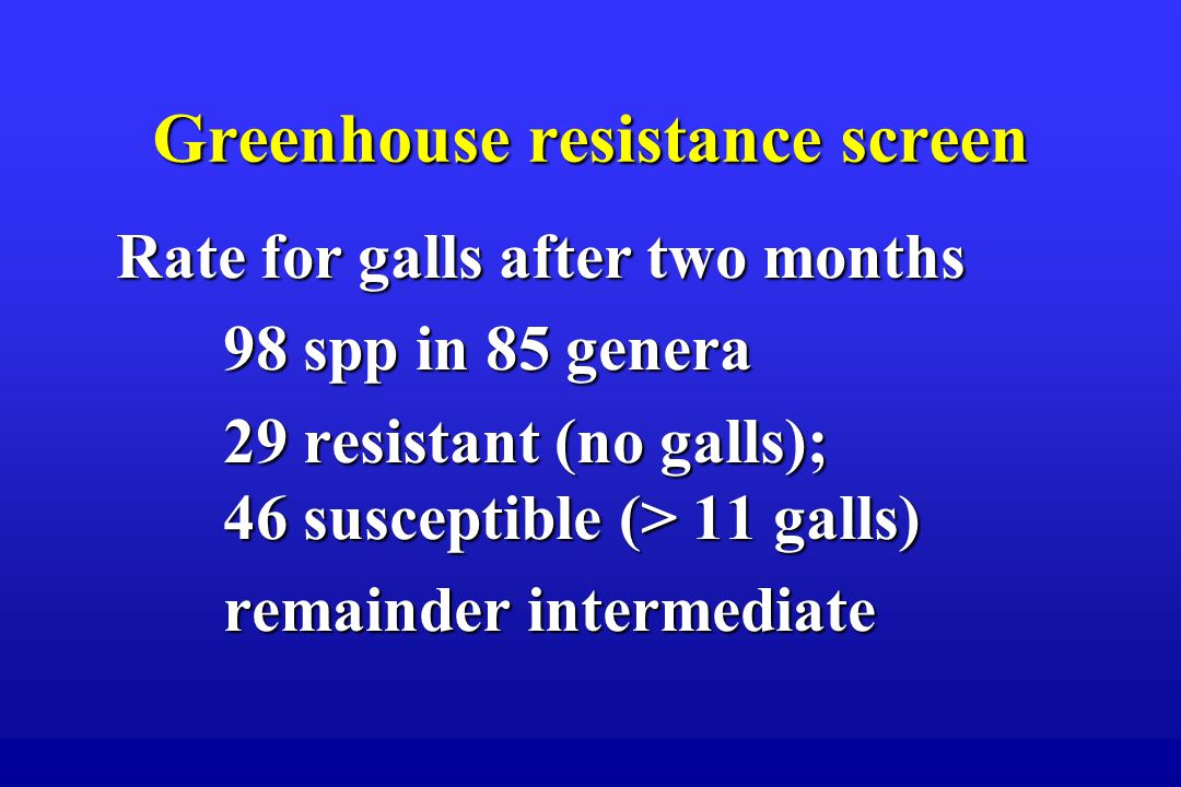 Greenhouse resistance screen Rate for galls after two months 98 spp in 85 genera 29 resistant (no galls); 46 susceptible (> 11 galls) remainder intermediate