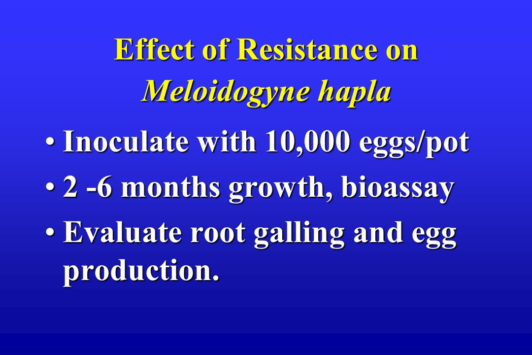 Effect of Resistance on Meloidogyne hapla Inoculate with 10,000 eggs/potInoculate with 10,000 eggs/pot 2 -6 months growth, bioassay2 -6 months growth, bioassay Evaluate root galling and egg production.Evaluate root galling and egg production.