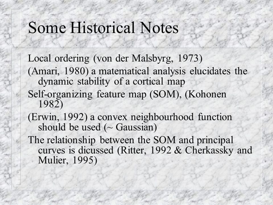 Some Historical Notes Local ordering (von der Malsbyrg, 1973) (Amari, 1980) a matematical analysis elucidates the dynamic stability of a cortical map