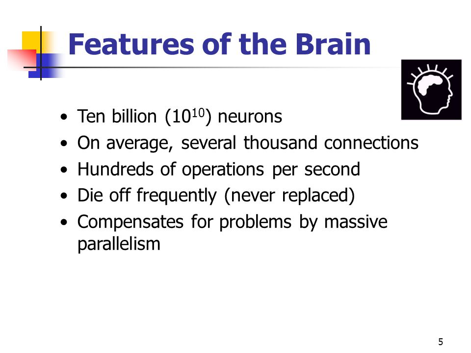 5 Features of the Brain Ten billion (10 10 ) neurons On average, several thousand connections Hundreds of operations per second Die off frequently (never replaced) Compensates for problems by massive parallelism