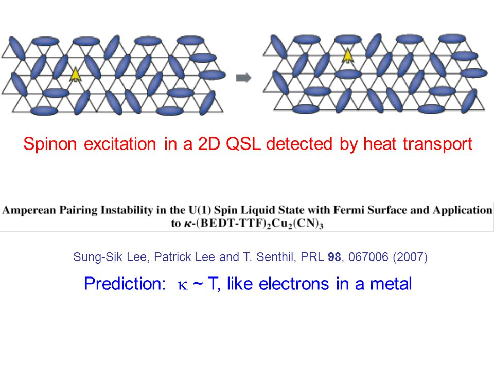 Spinon excitation in a 2D QSL detected by heat transport Sung-Sik Lee, Patrick Lee and T.