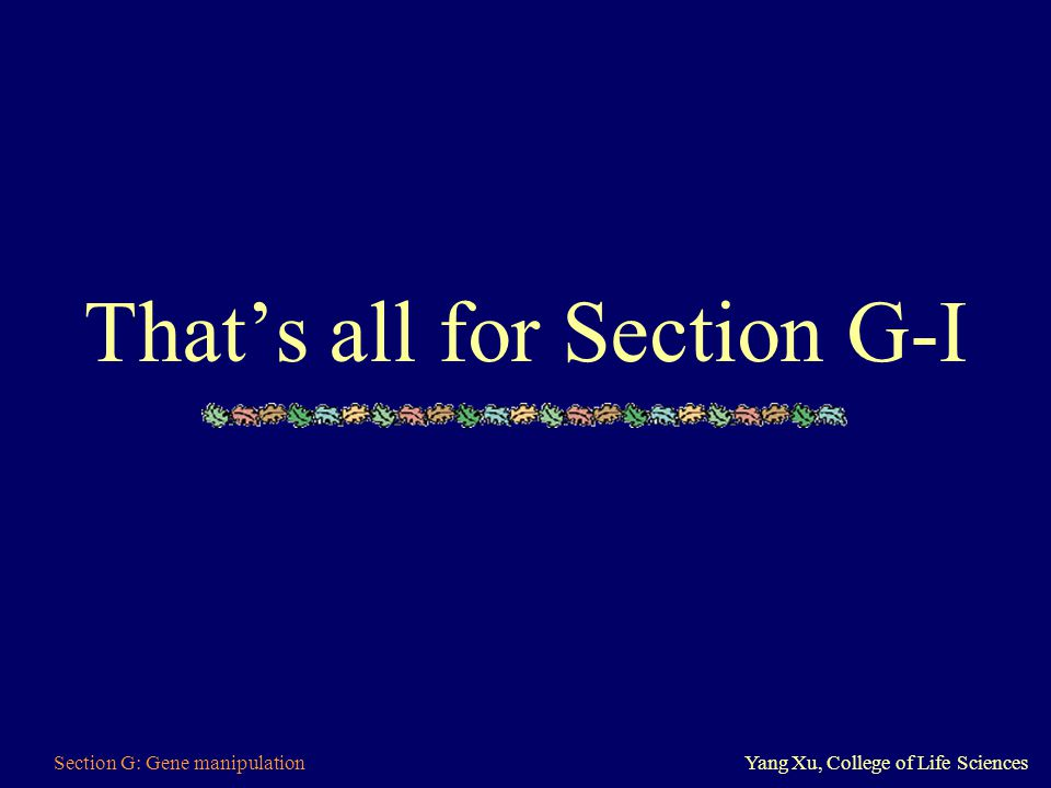 Section G: Gene manipulationYang Xu, College of Life Sciences That's all for Section G-I