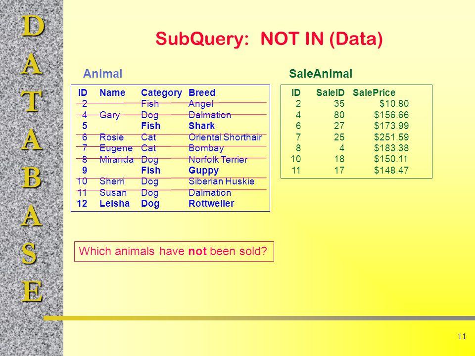 DATABASE 11 SubQuery: NOT IN (Data) IDNameCategoryBreed 2FishAngel 4GaryDogDalmation 5FishShark 6RosieCatOriental Shorthair 7EugeneCatBombay 8MirandaDogNorfolk Terrier 9FishGuppy 10SherriDogSiberian Huskie 11SusanDogDalmation 12LeishaDogRottweiler IDSaleIDSalePrice 235$10.80 480$156.66 627$173.99 725$251.59 84$183.38 1018$150.11 1117$148.47 AnimalSaleAnimal Which animals have not been sold