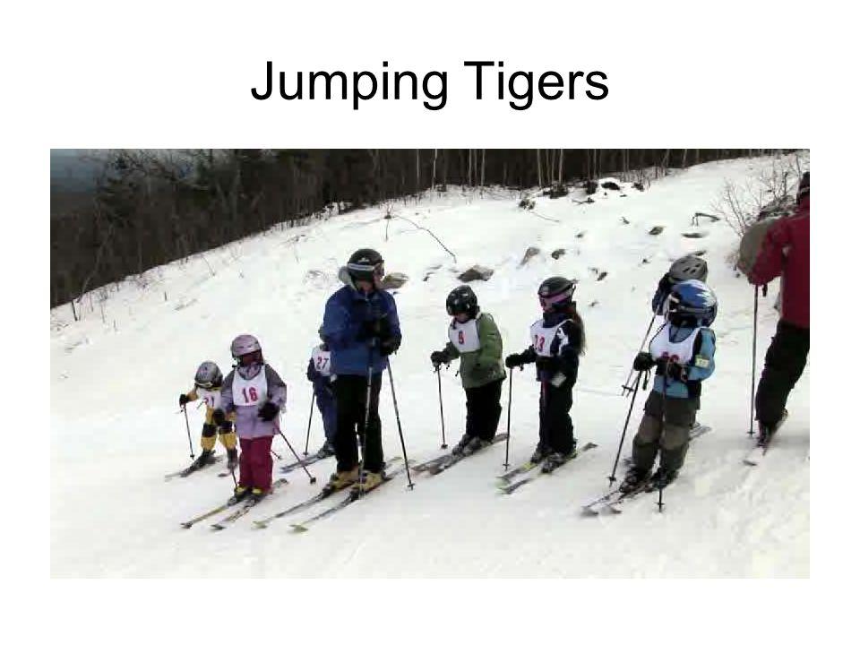 Jumping Tigers