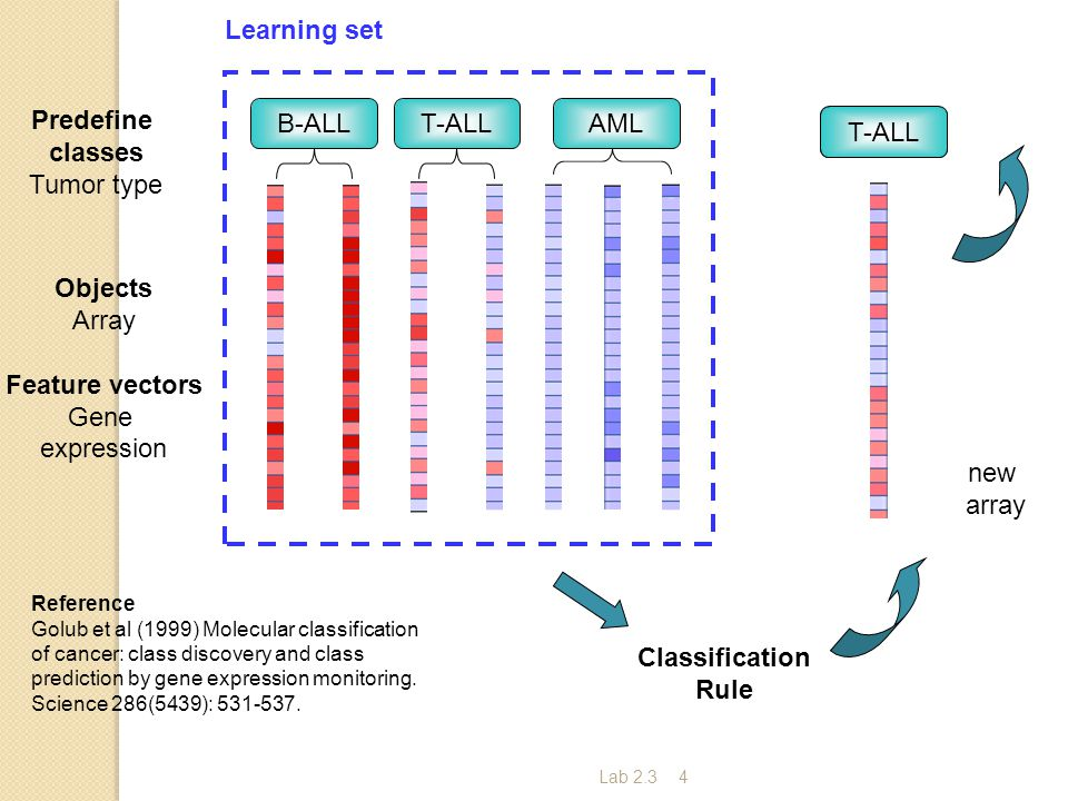 Lab 2.34 B-ALL T-ALLAML Reference Golub et al (1999) Molecular classification of cancer: class discovery and class prediction by gene expression monitoring.