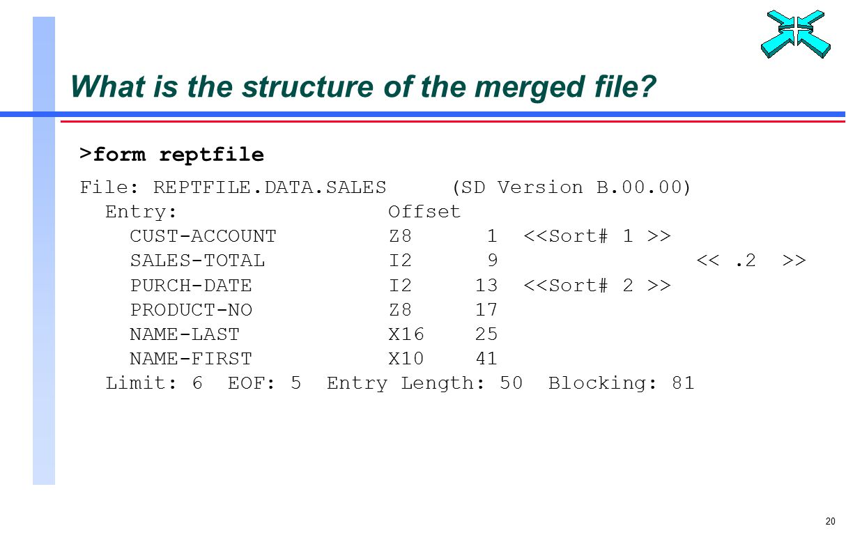 20 What is the structure of the merged file.