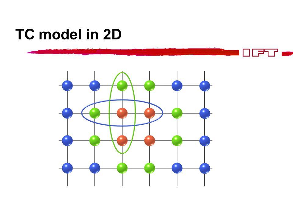 TC model in 2D