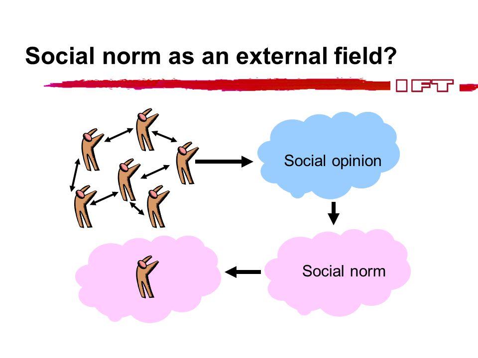 Social norm as an external field? Social opinion Social norm