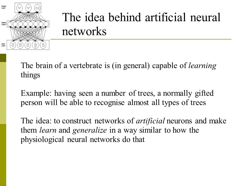 The idea behind artificial neural networks The brain of a vertebrate is (in general) capable of learning things Example: having seen a number of trees, a normally gifted person will be able to recognise almost all types of trees The idea: to construct networks of artificial neurons and make them learn and generalize in a way similar to how the physiological neural networks do that