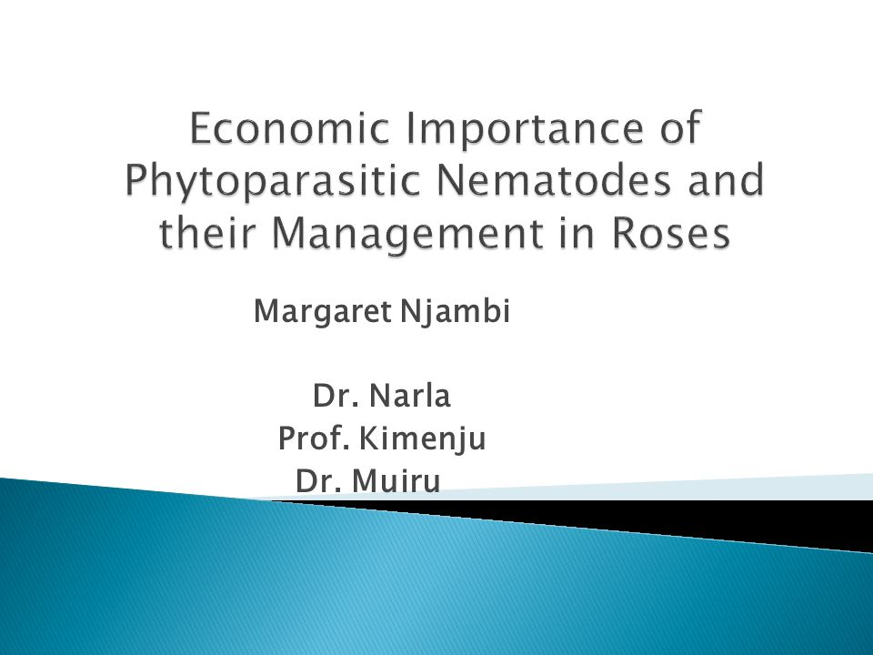 Objectives Broad Objective  The overall objective of this study is to Manage Plant Parasitic Nematodes through use of a Fungicide as an alternative to more Toxic Nematicides currently in use in roses