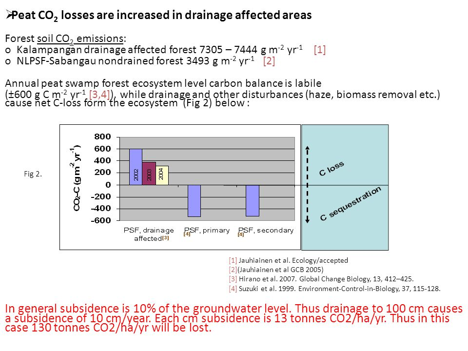  Peat CO 2 losses are increased in drainage affected areas Forest soil CO 2 emissions: o Kalampangan drainage affected forest 7305 – 7444 g m -2 yr -