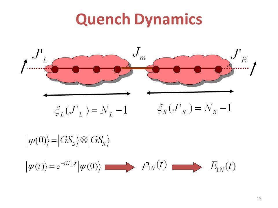 Quench Dynamics 19