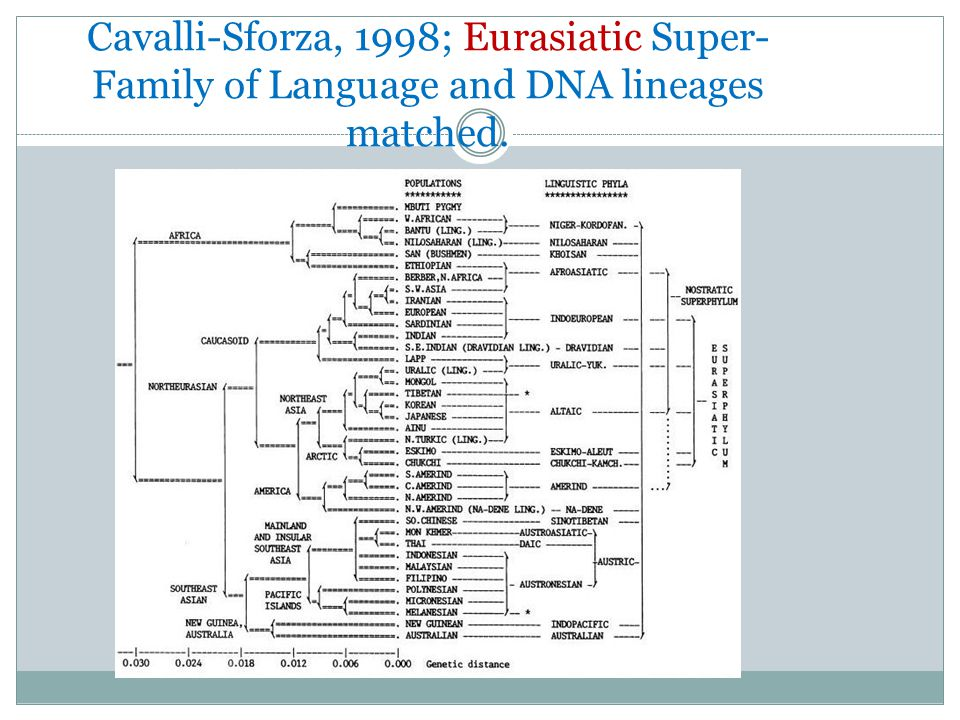 It was noted that DNA lineages and Language families overlapped exactly Cavalli-Sforza, L.L. et al, Reconstruction of human evolution: Bringing togeth