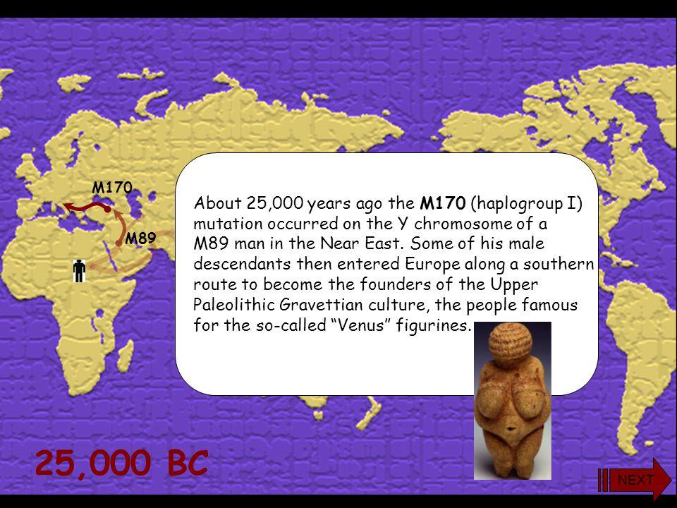 yDNA Haplogroup I