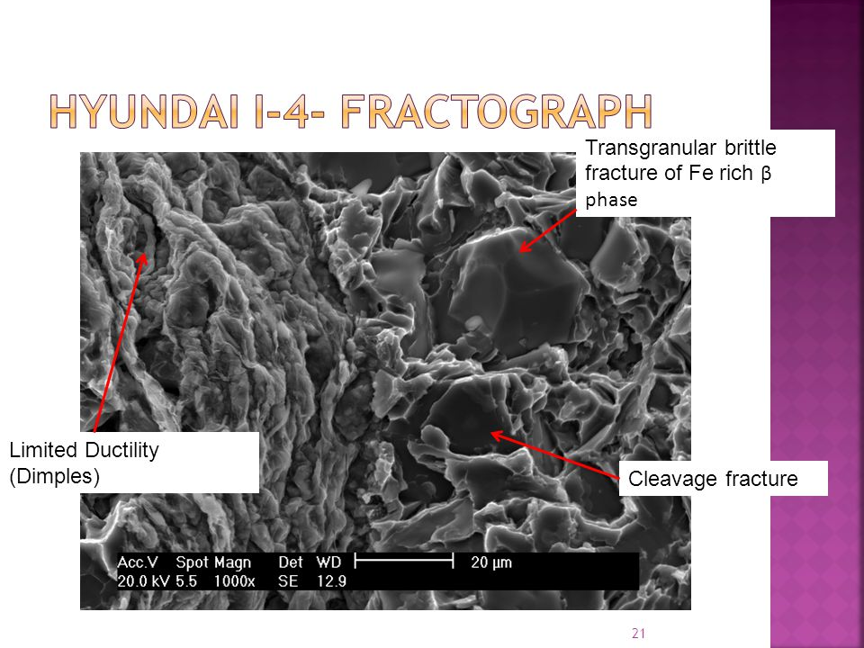 21 Limited Ductility (Dimples) Transgranular brittle fracture of Fe rich β phase Cleavage fracture