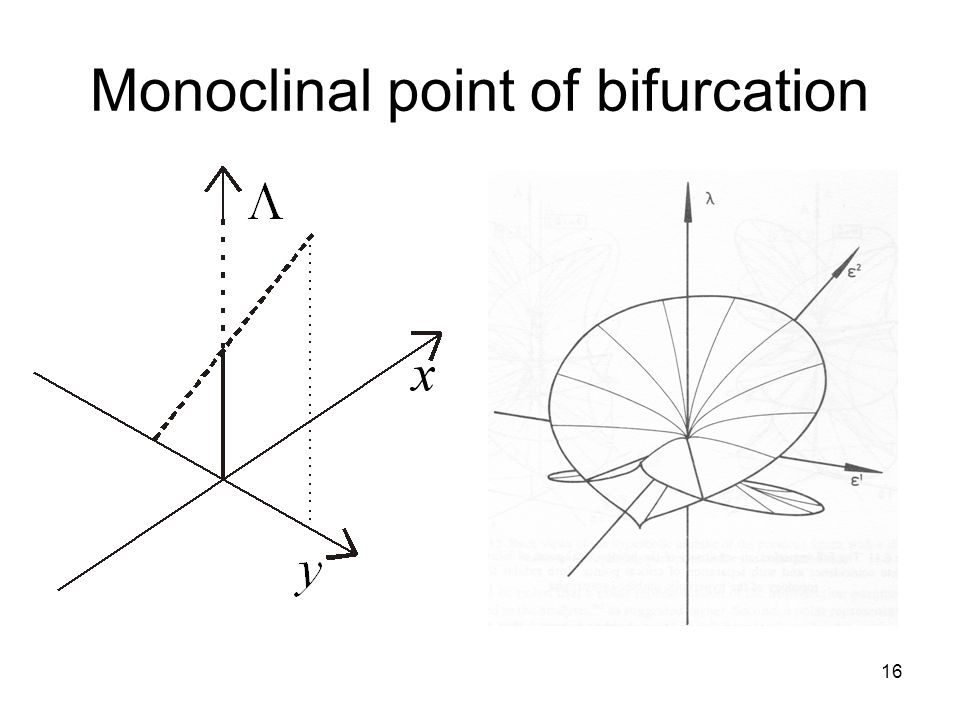 16 Monoclinal point of bifurcation