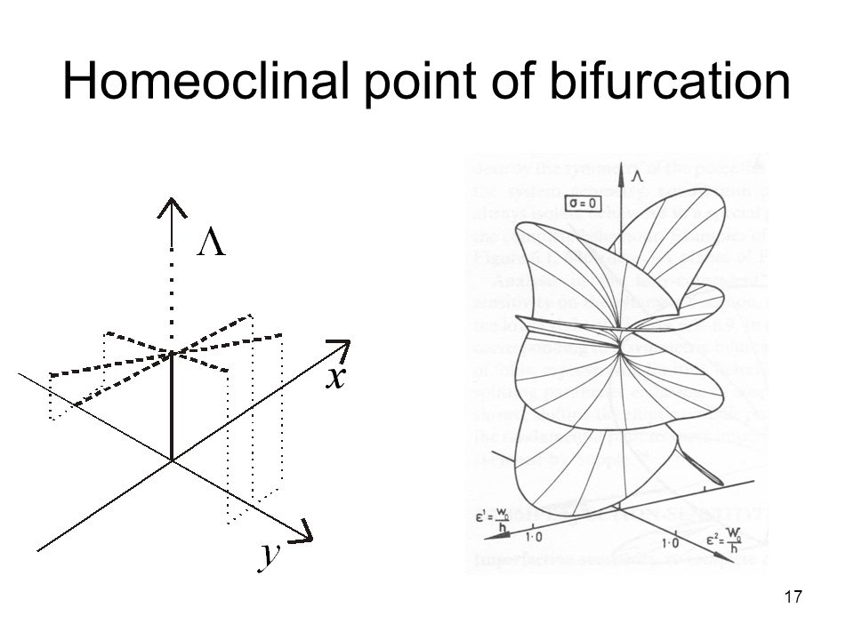 17 Homeoclinal point of bifurcation