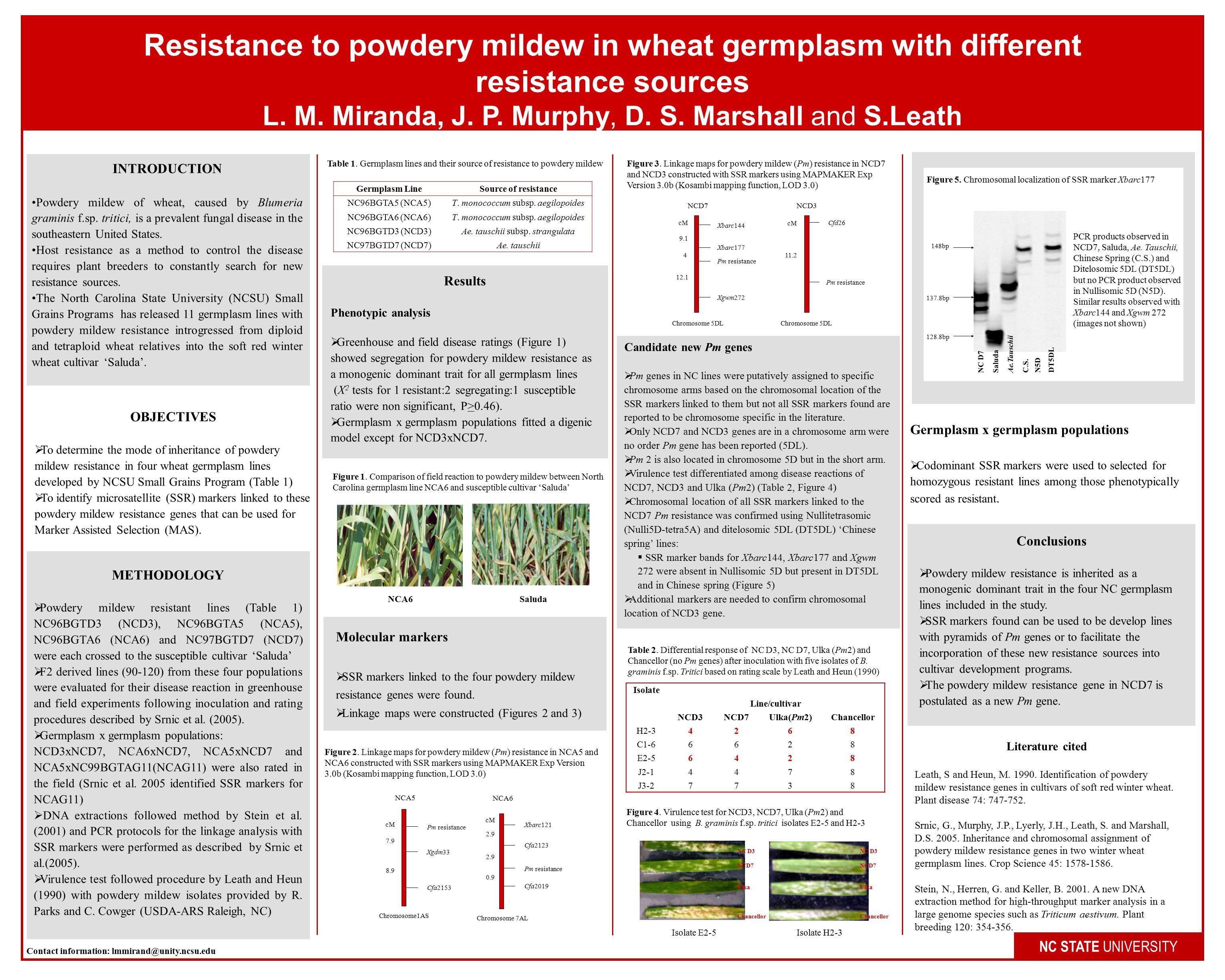 Resistance to powdery mildew in wheat germplasm with different resistance sources L.