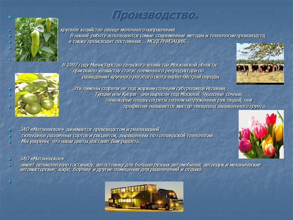Совхоз « Матвеевский (ныне ЗАО Матвеевское ) - лидер агропрома, еще с советских времен, организован в 1960 году, как крупное хозяйство овоще - молочного направления.
