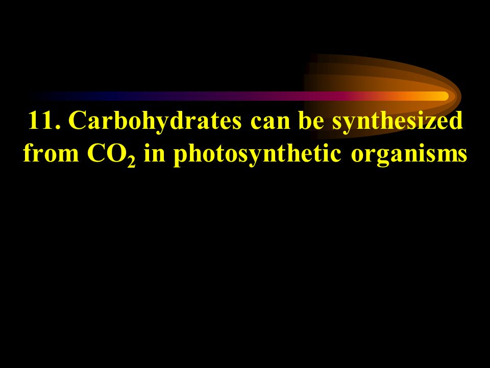11. Carbohydrates can be synthesized from CO 2 in photosynthetic organisms