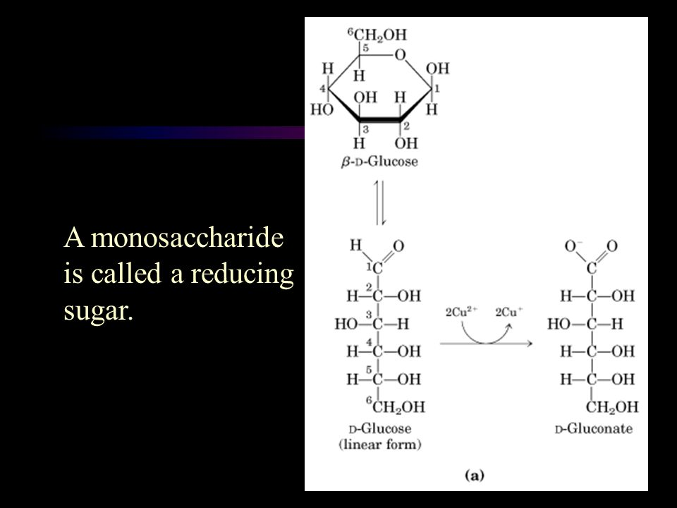 A monosaccharide is called a reducing sugar.