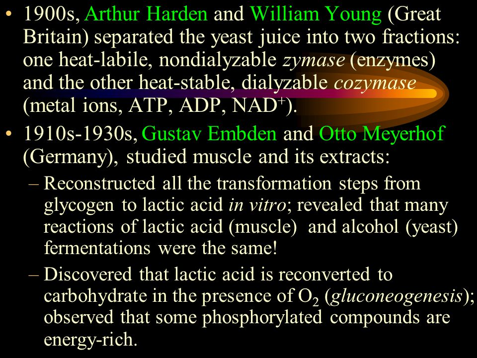 1900s, Arthur Harden and William Young (Great Britain) separated the yeast juice into two fractions: one heat-labile, nondialyzable zymase (enzymes) and the other heat-stable, dialyzable cozymase (metal ions, ATP, ADP, NAD + ).
