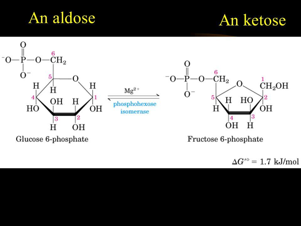 Reversible An aldose An ketose