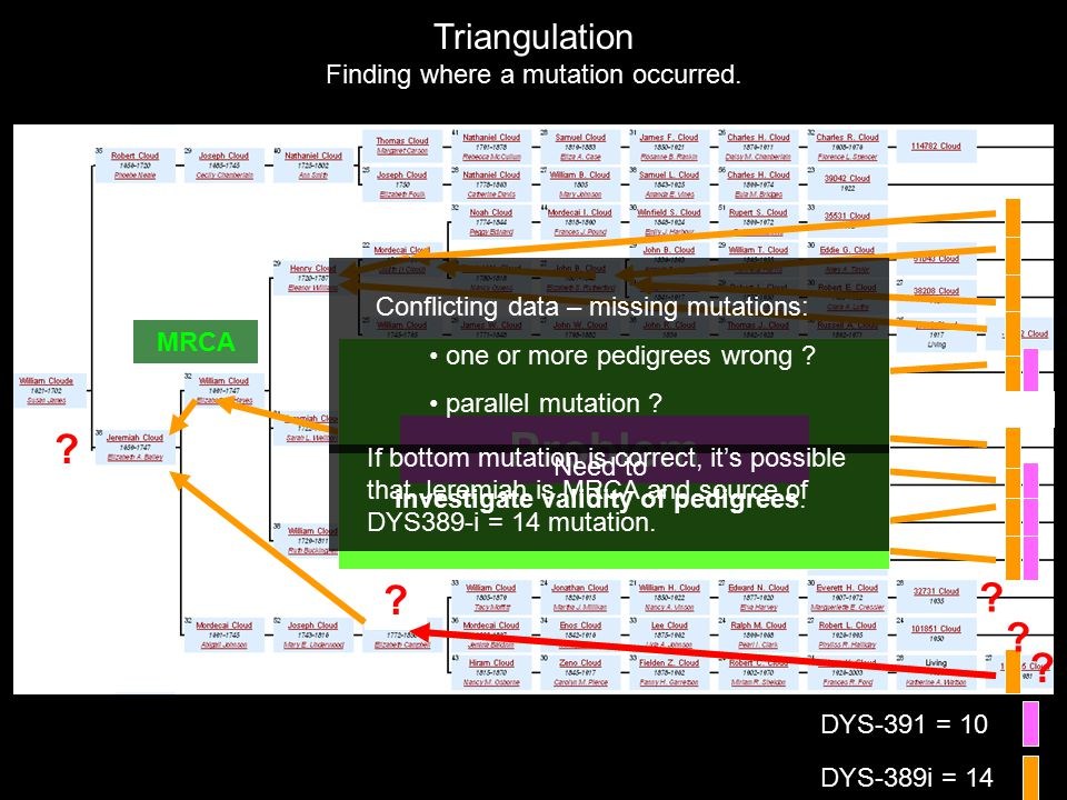 DYS-391 = 10 DYS-389i = 14 Triangulation Finding where a mutation occurred.