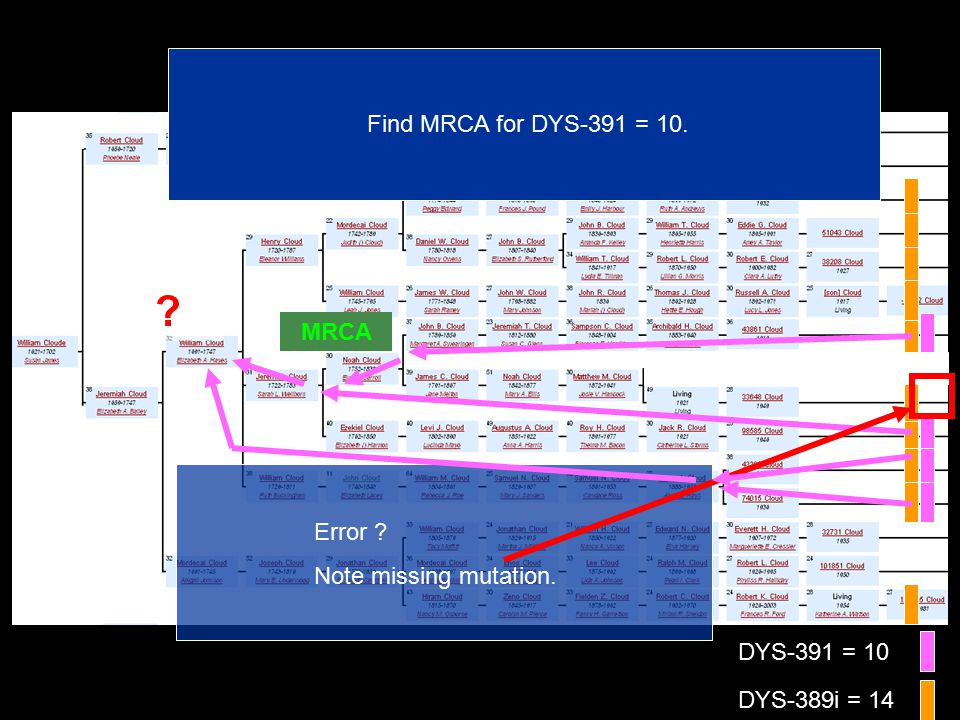 DYS-391 = 10 DYS-389i = 14 Find MRCA for DYS-391 = 10. MRCA Error Note missing mutation.