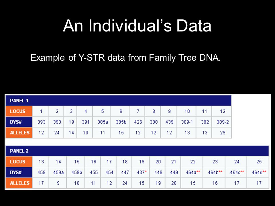 An Individual's Data Example of Y-STR data from Family Tree DNA.