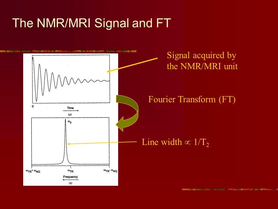 Linewidth is a f(T 2 )