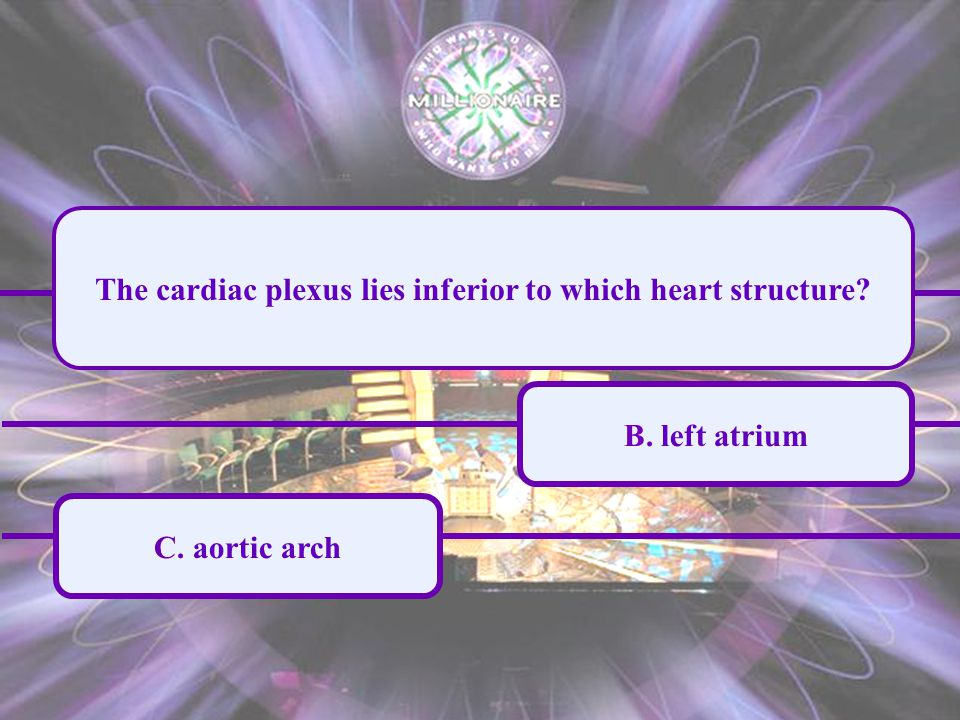 A. right atrium C. aortic arch B. left atrium D.