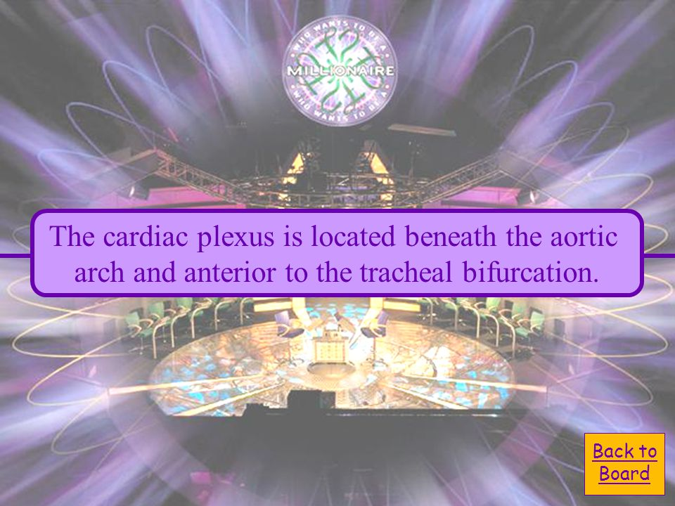 Back to Board The cardiac plexus is located beneath the aortic arch and anterior to the tracheal bifurcation.