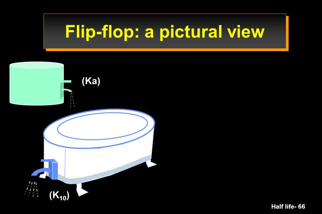 Half life- 66 (Ka) (K 10 ) Flip-flop: a pictural view