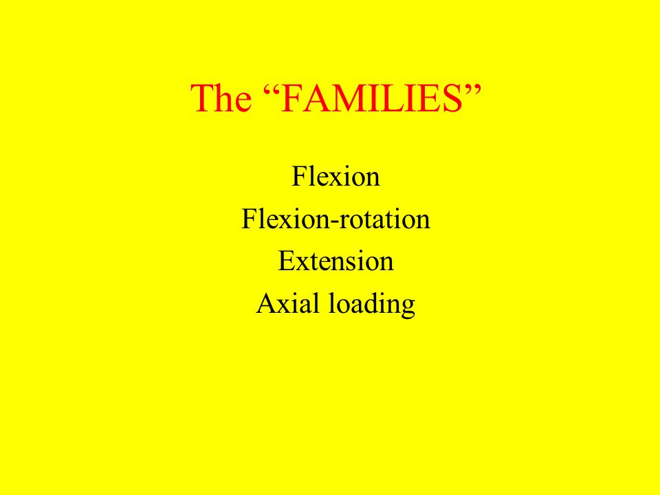 "The ""FAMILIES"" Flexion Flexion-rotation Extension Axial loading"