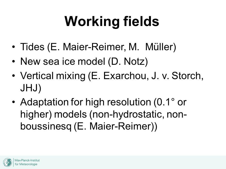 Working fields Tides (E. Maier-Reimer, M. Müller) New sea ice model (D.