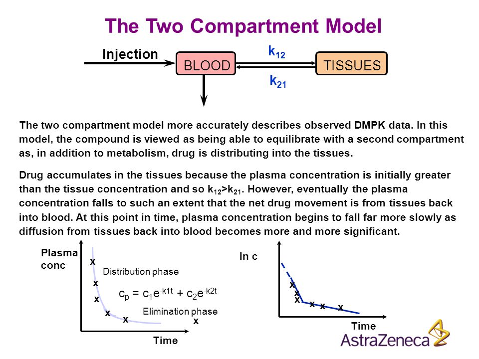 The Two Compartment Model The two compartment model more accurately describes observed DMPK data. In this model, the compound is viewed as being able