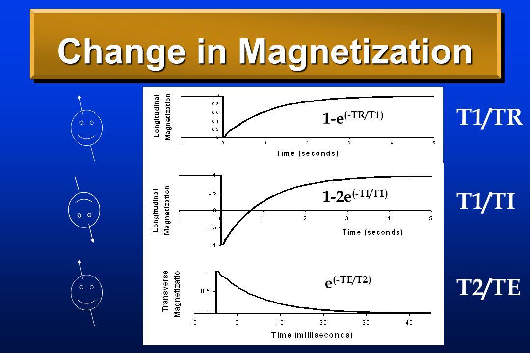 Change in Magnetization T1/TR T1/TI T2/TE 1-e (-TR/T1) 1-2e (-TI/T1) e (-TE/T2)