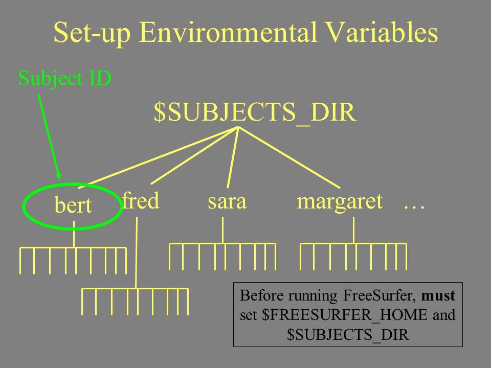 Set-up Environmental Variables bert $SUBJECTS_DIR fredsaramargaret … Subject ID Before running FreeSurfer, must set $FREESURFER_HOME and $SUBJECTS_DIR