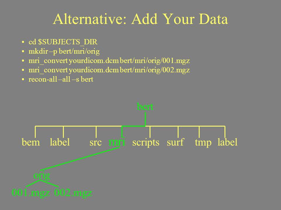 Alternative: Add Your Data cd $SUBJECTS_DIR mkdir –p bert/mri/orig mri_convert yourdicom.dcm bert/mri/orig/001.mgz mri_convert yourdicom.dcm bert/mri/