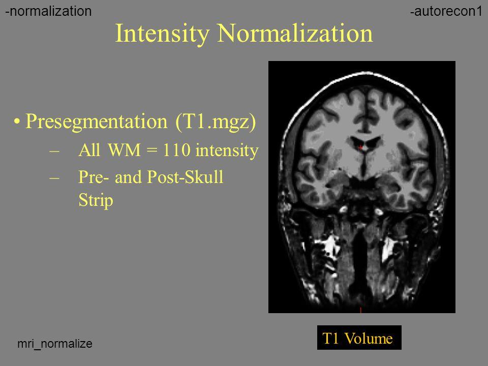 Intensity Normalization Presegmentation (T1.mgz) –All WM = 110 intensity –Pre- and Post-Skull Strip T1 Volume - autorecon1-normalization mri_normalize