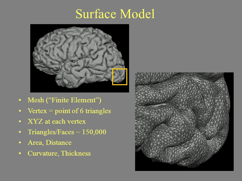 Cortical Reconstruction Goals Geometrically Accurate surfaces –Accurately follow the boundaries seen on the scan for each of your individual subjects Topologically Correct surfaces –Each surface is a 2-D continuous, non self- intersecting sheet and can be inflated into a perfect sphere Surfaces are only as good as your scan.